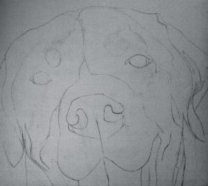 addie sketch